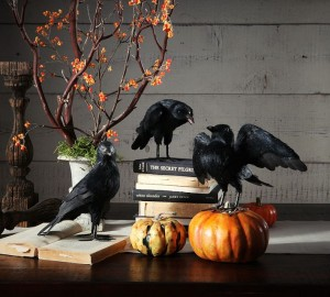 Pottery Barn faux crows