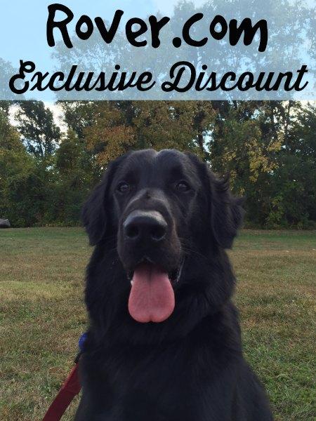Rover.com discount